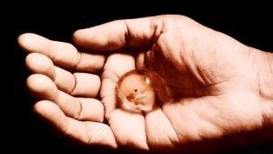 متى يستعد الرحم للحمل بعد الاجهاض