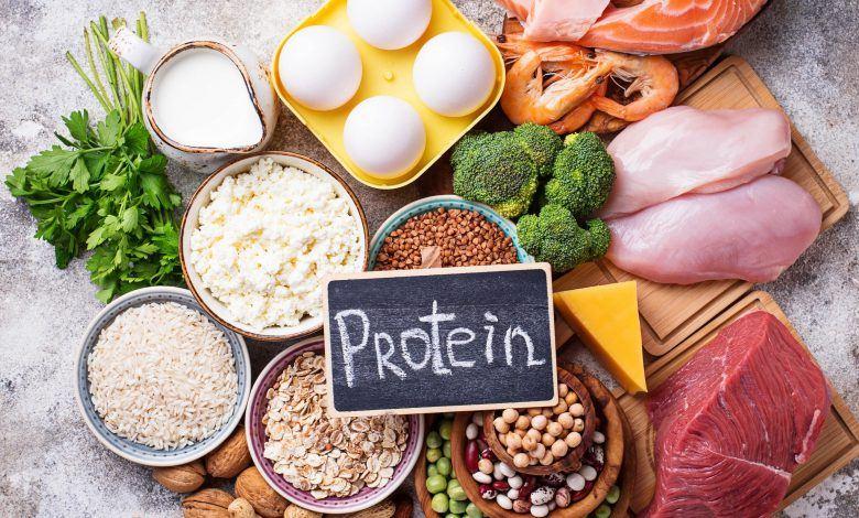 أهمية البروتين للأطفال